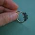 lichen ring