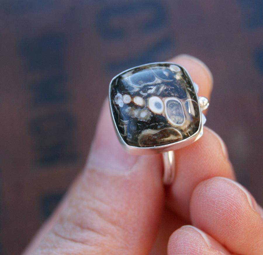 mollusk ring